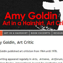 Amy Goldin Art in a Hairshirt